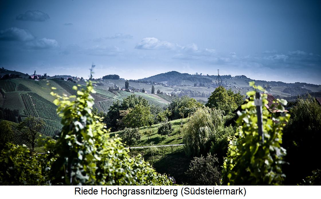 Riede Hochgrassnitzberg