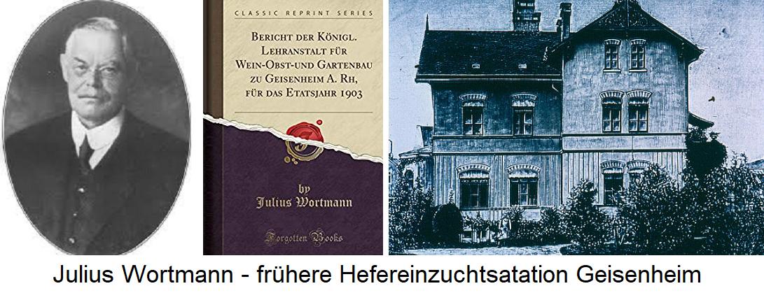 Julius Wortmann - Portrait, book cover and earlier Hefereinzuchtsatation Geisenheim