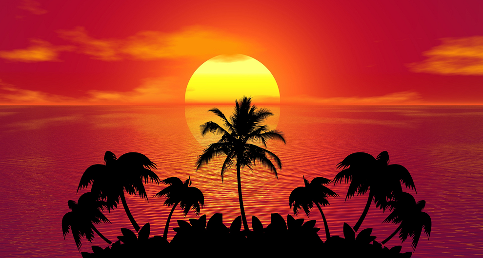 Holiday wine - sunset at the sea with palm trees