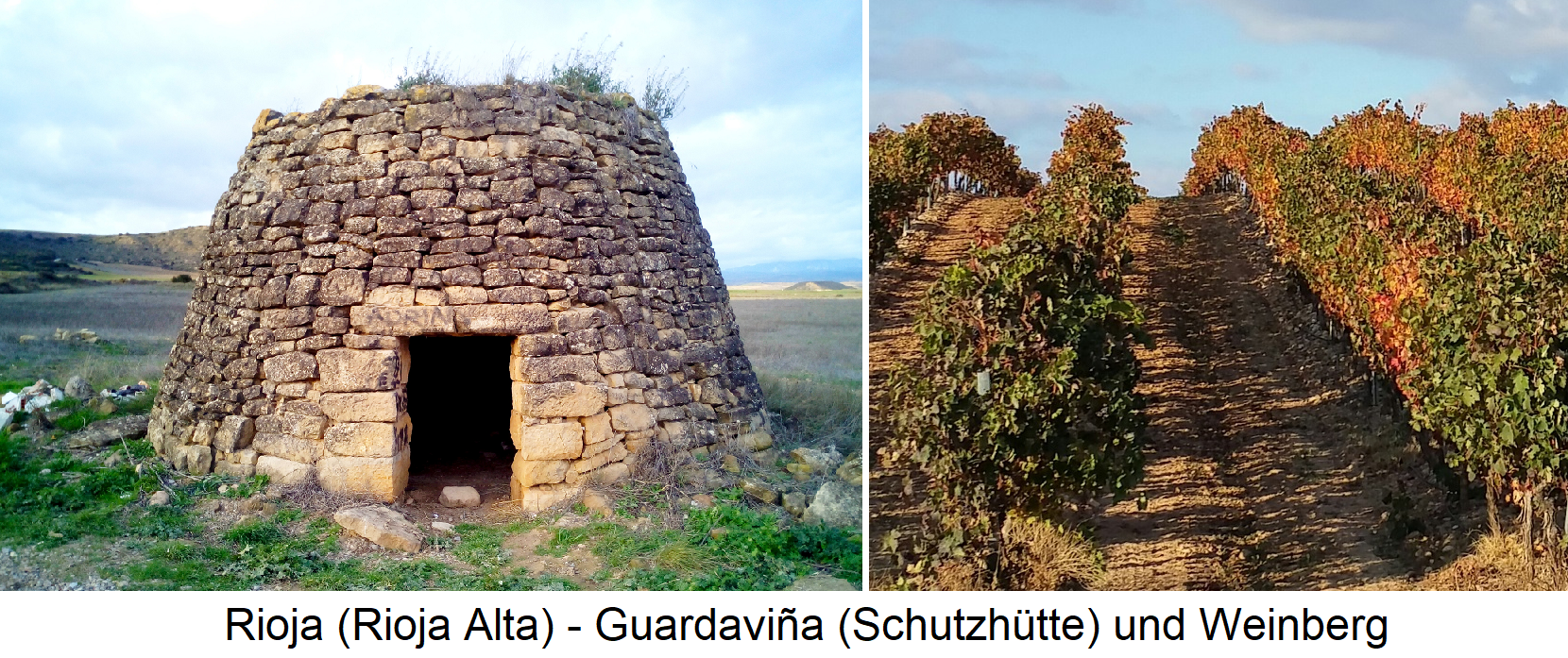 Rioja (Rioja Alta) - Guardaviña (refuge) and vineyard