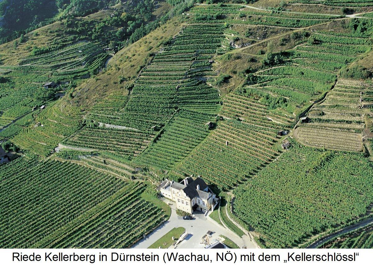 Kellerberg with Kellerschlössl - Dürnstein Wachau