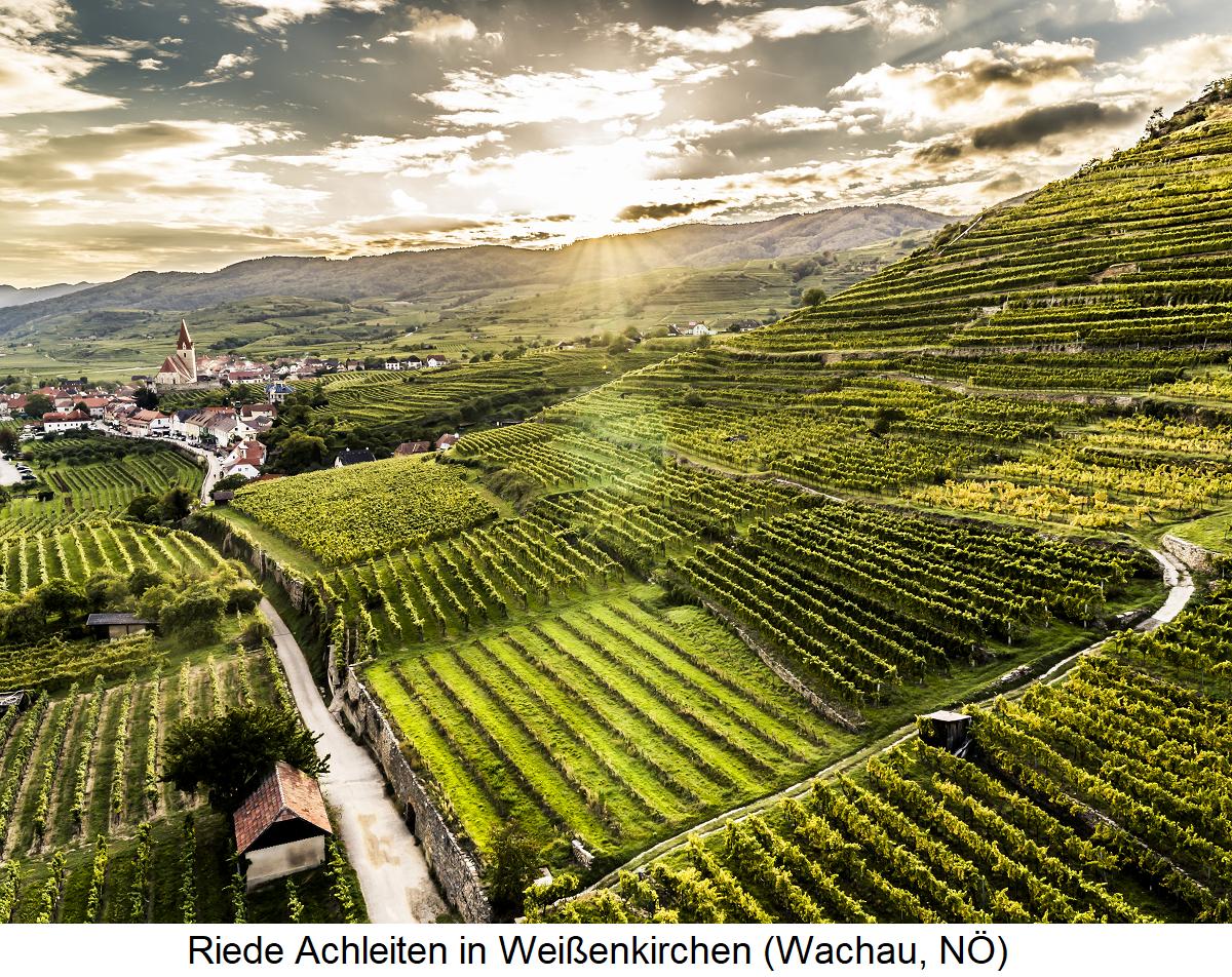 Achleiten - Wachau (Lower Austria)