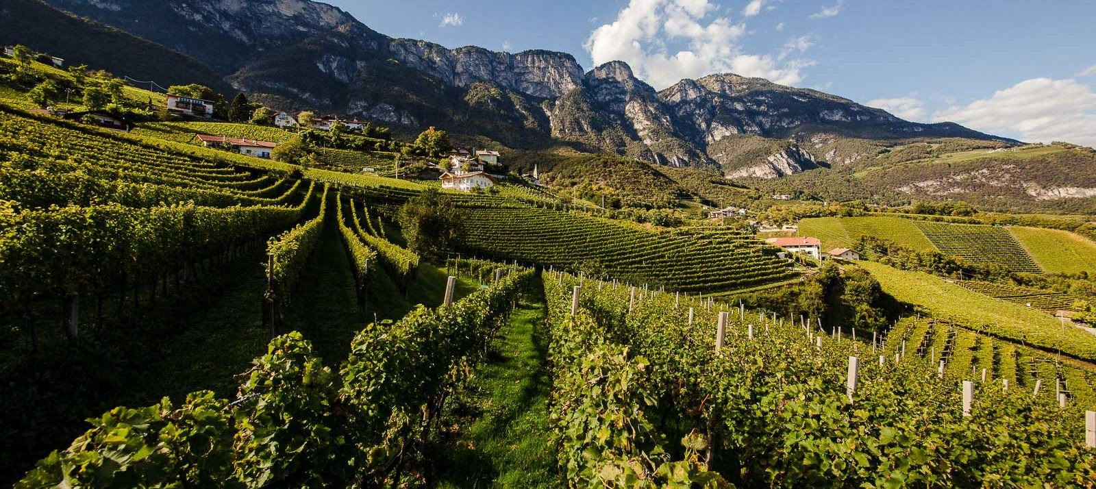 Kurtatsch winery