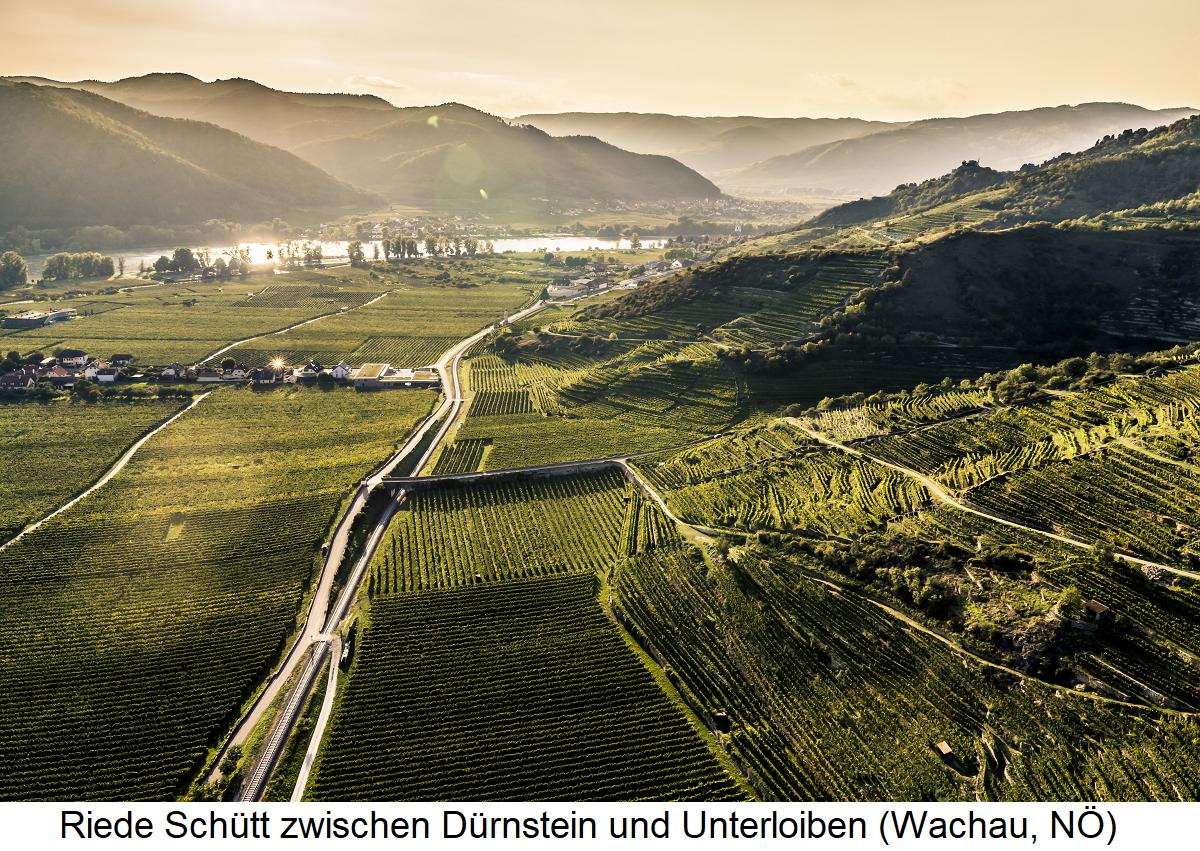 Schütt - between Dürnstein and Unterloiben (Wachau, Lower Austria)