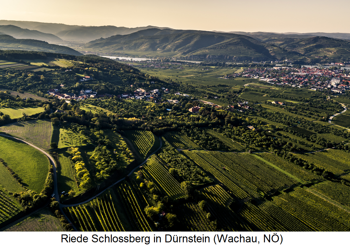 Schlossberg - Dürnstein (Wachau, Lower Austria)