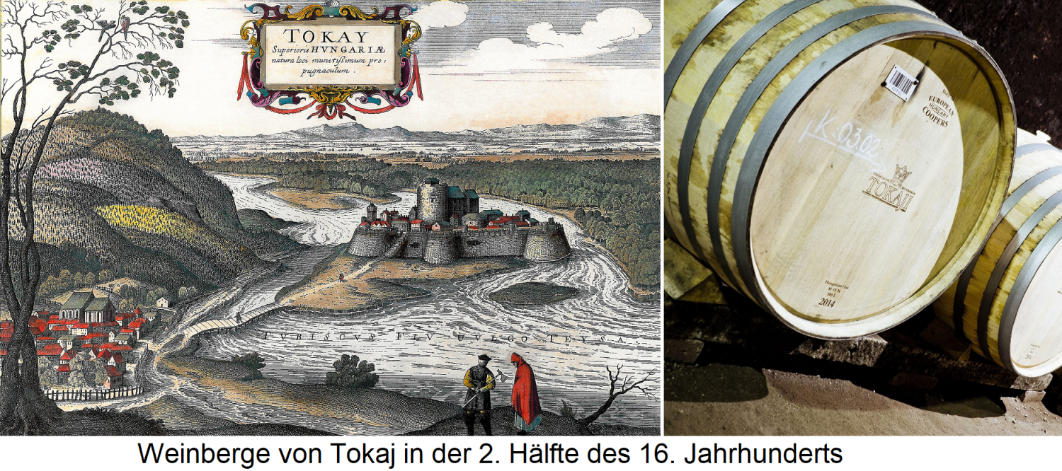 Tokaj vineyards in the second half of the 16th century and barrels