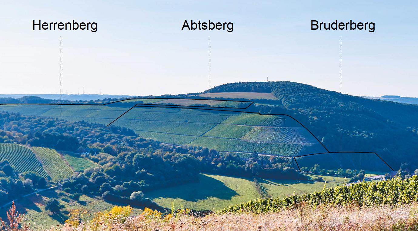Maximin Grünberg - Abtsberg, Bruderberg, Herrenberg