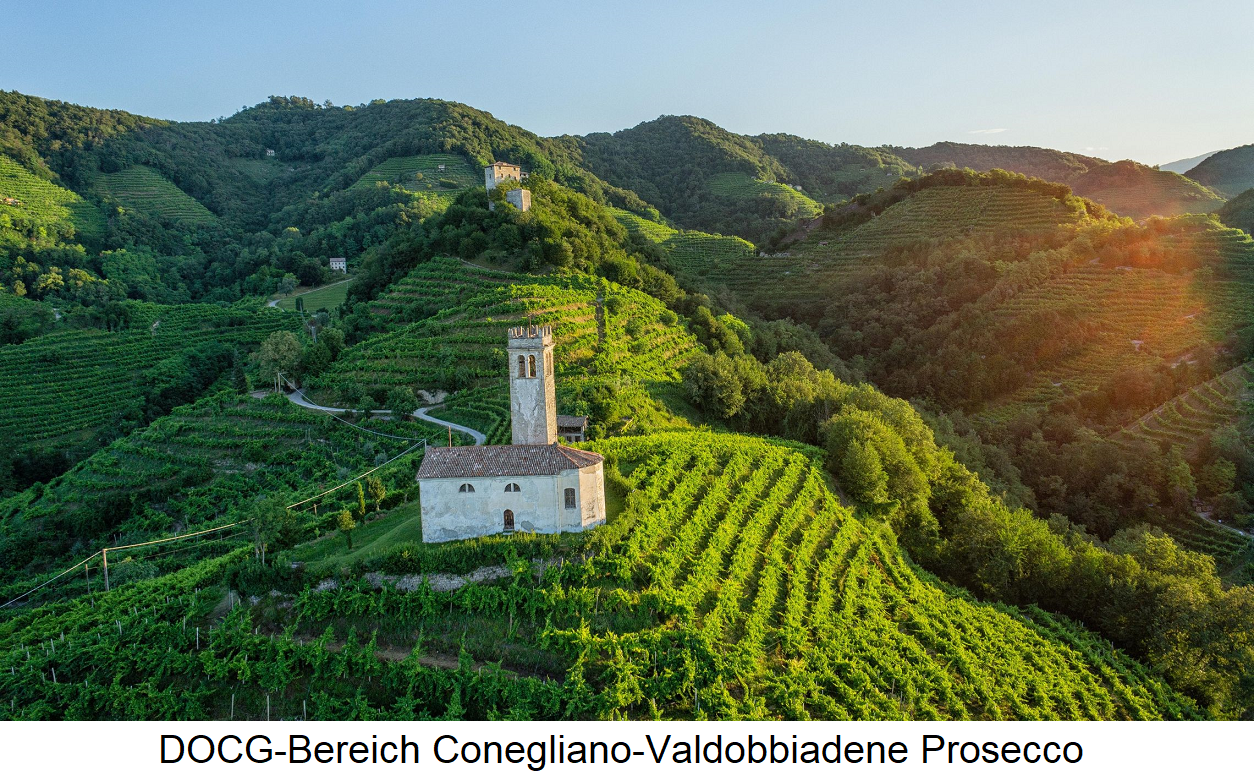 Prosecco - vineyards