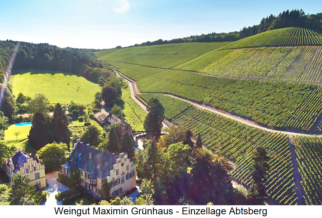 Maximin Grünhaus - winery building on the edge of Abtsberg