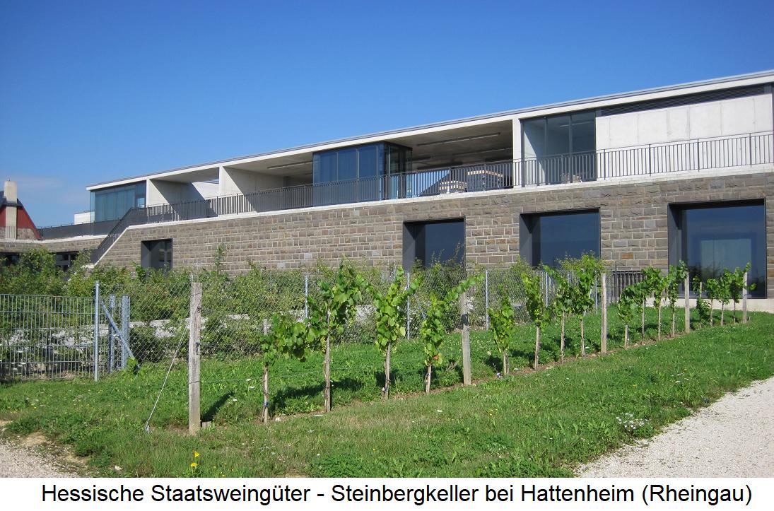 Hessian State Wineries - Steinbergkeller near Hattenheim (Rheingau)