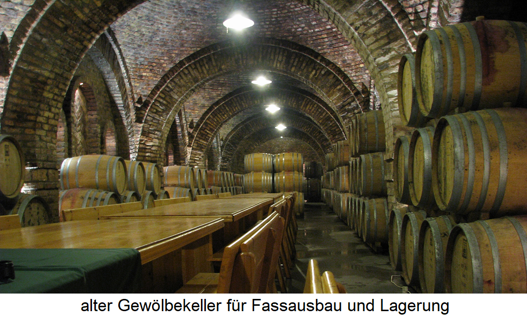 Wine cellar - vaulted cellar for barrel expansion and storage