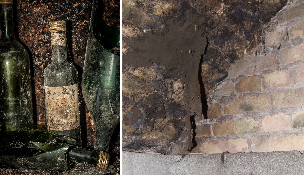 Wine bottles with mold fungus / cellar mold on walls