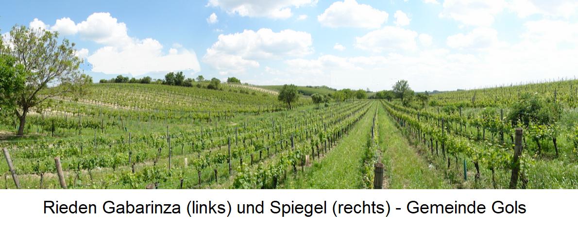 Gabarinza and Spiegel - Municipality Gols (Neusiedelersee)