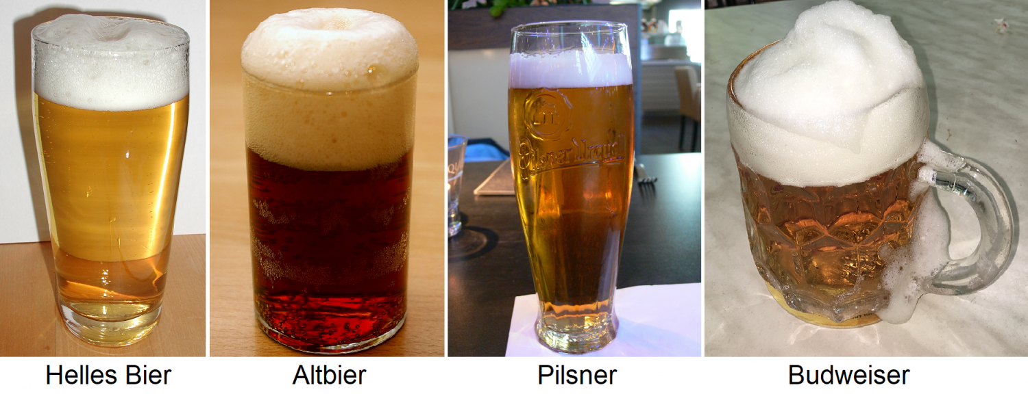 Beer - beer glasses with light beer, Altbier, Pilsner and Budweiser