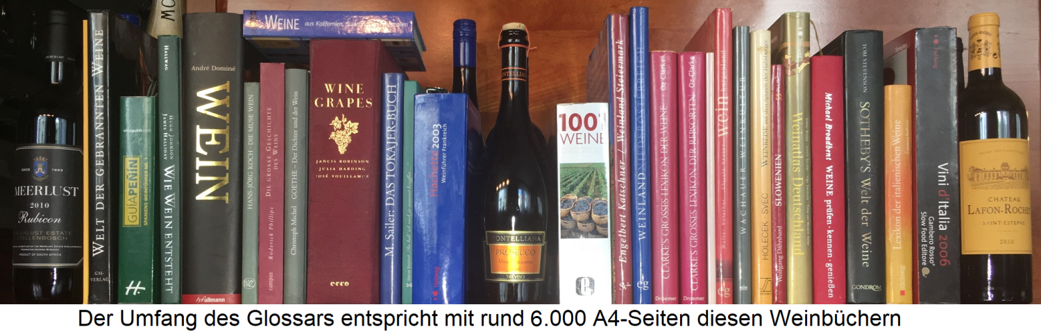 Wine glossary - book shelf with many wine books that correspond to the scope of the glossary