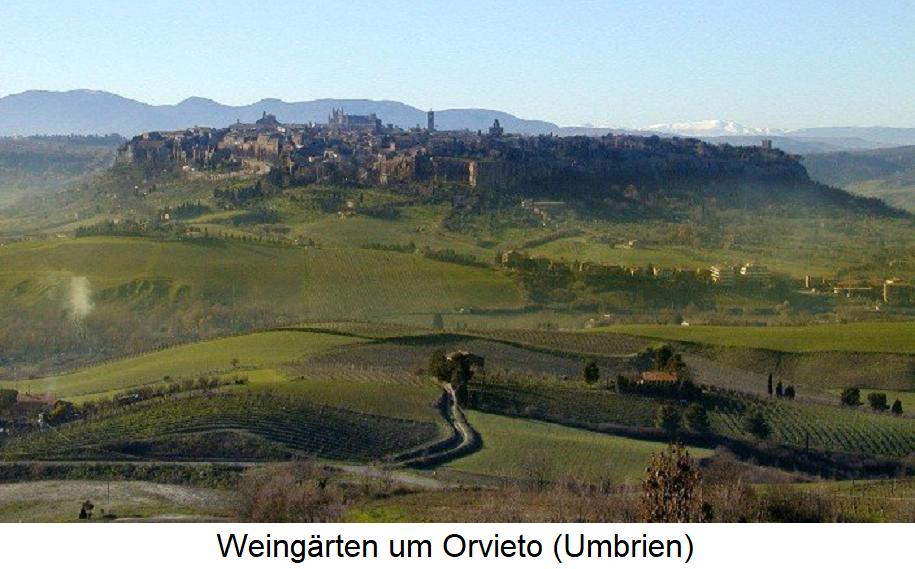 Orvieto - Weingärten um Orvieto