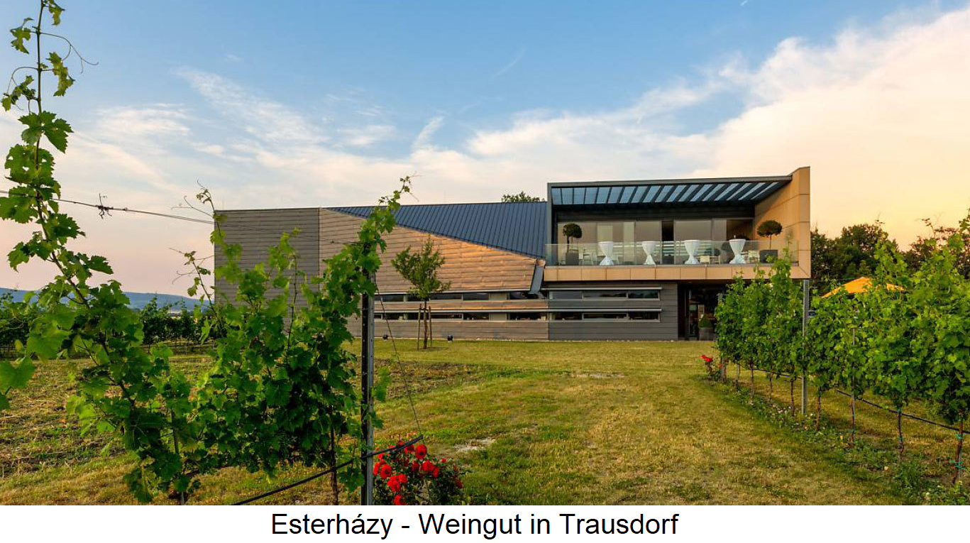 Esterházy - Winery in Trausdorf