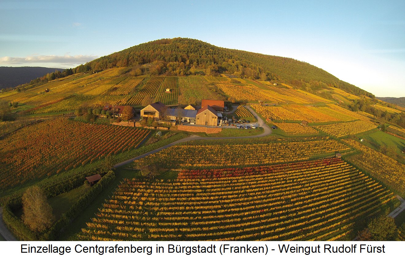 Centgrafenberg - Vineyard with Rudolf Fürst Winery