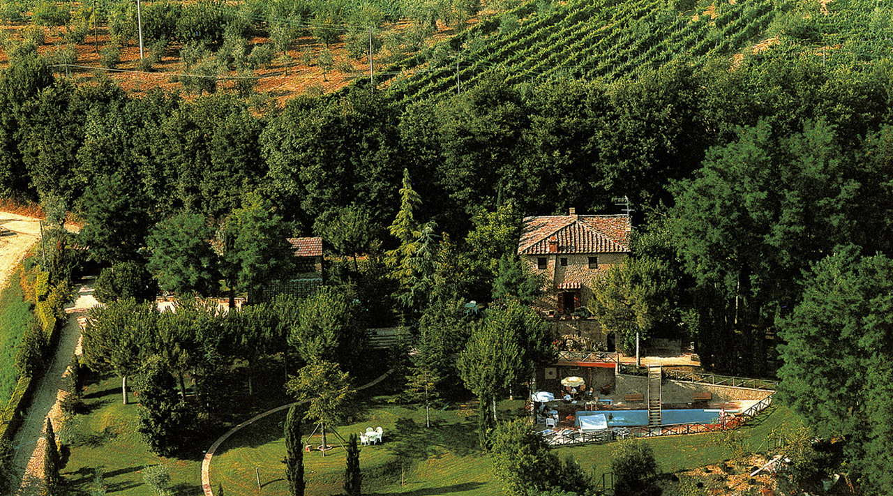 I Balzini - winery in the middle of vineyards